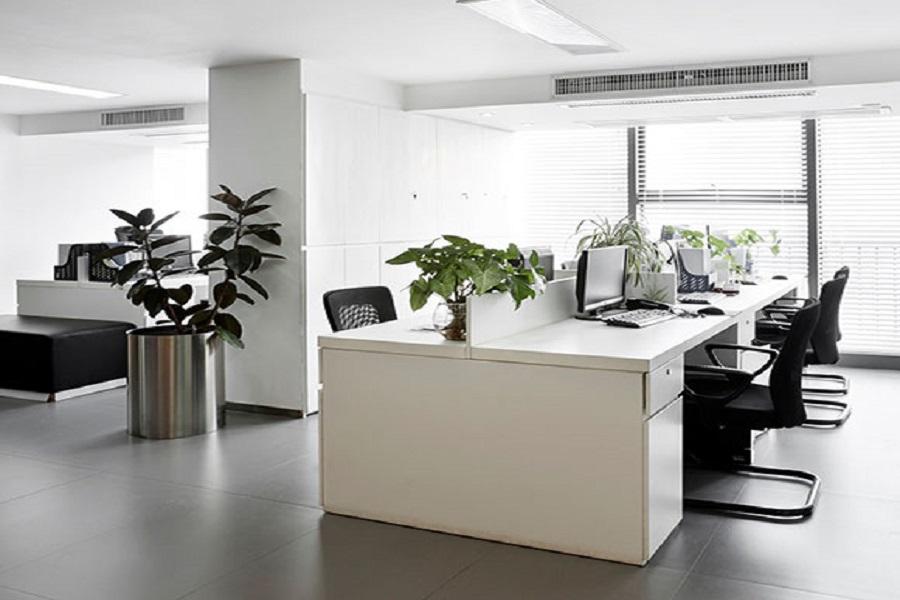 میز کار زیبا و گلدان و گیاه در دفتر کار