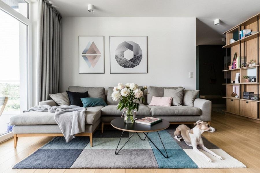 تابلوهای خاص روی دیوار و سگی در خانه