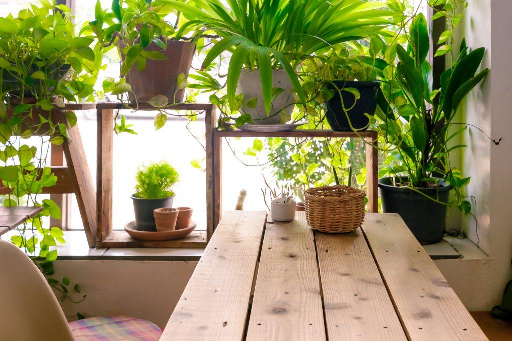 تصویر یک میز چوبی در کنار یک پنجره پر از گل های سرسبز.