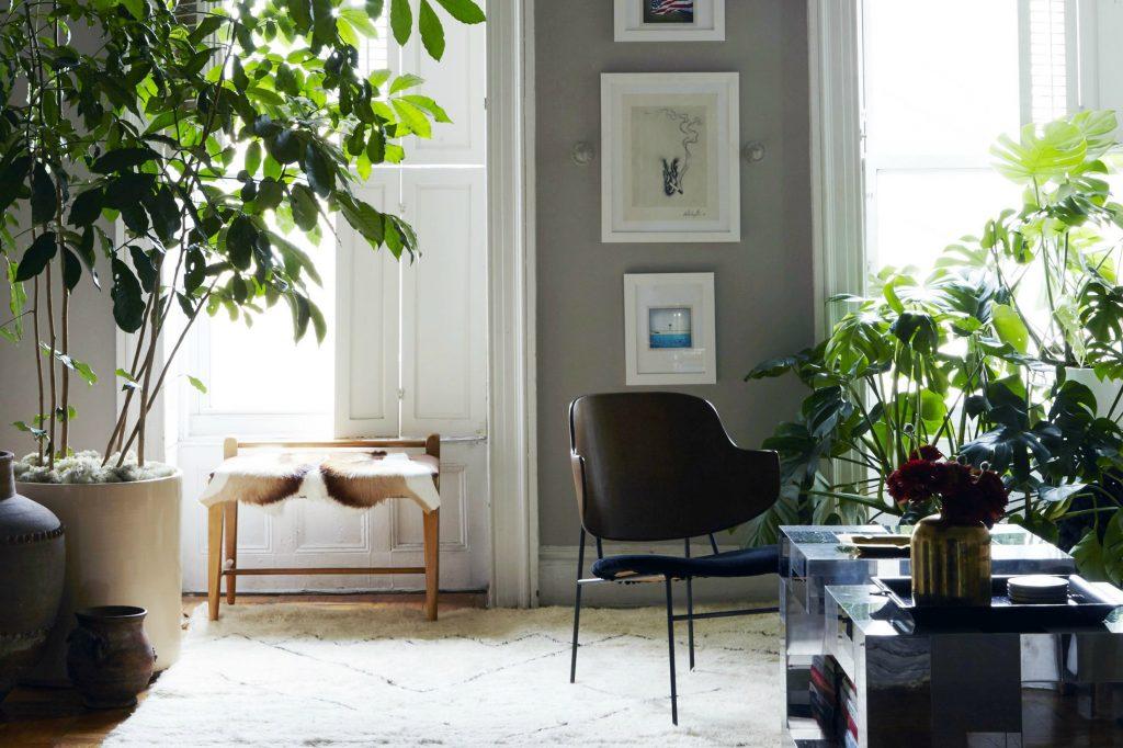 تصویر یک اتاق مدرن با میز شیشه ای، دیوارهای طوسی، فرش سفید مدرن و گل های آپارتمانی بزرگ.
