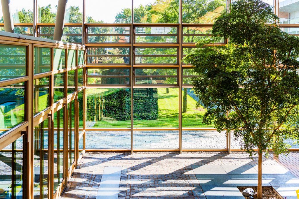 آتریوم زیبا و دلنشین با دیواره های شیشه ای و درخت در میان آن طوریکه گویی طبیعت در قلب ساختمان واقع شده است.